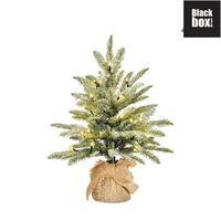 Black Box Trees - Brewer sapin de noël frosted, vert LED -  h45xd36cm