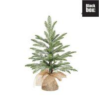 Black Box Trees - Brewer sapin de noël frosted, vert -  h45xd36cm