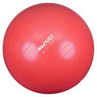Avento Ballon de fitness/d'exercice Diamètre 65 cm Rose