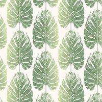 Evergreen Papier peint Monstera Leaves Blanc et vert