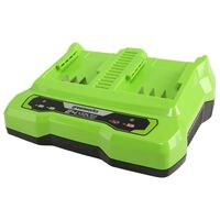 Greenworks Chargeur à double fente 24 V 4 A