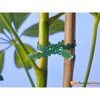 Lien universel de tuteurage en polyéthylène vert réutilisable 25m