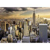 Puzzle 1000 pièces :  Magnifique ville de New-York