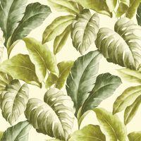 DUTCH WALLCOVERINGS Papier peint Feuilles tropicales Vert et blanc