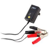Ansmann Chargeur de batterie plomb-acide ALCS 2-12/0.4 Noir 400 mA