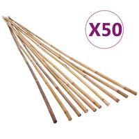 vidaXL Piquets de jardin Bambou 50 pcs 120 cm