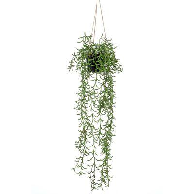 Emerald Buisson suspendu senecio artificiel en pot 70 cm
