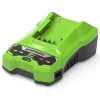 Greenworks Chargeur de batterie 24 V 2 A