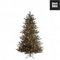 Black Box Trees - Macallan sapin de noël LED vert -  h185xd127cm